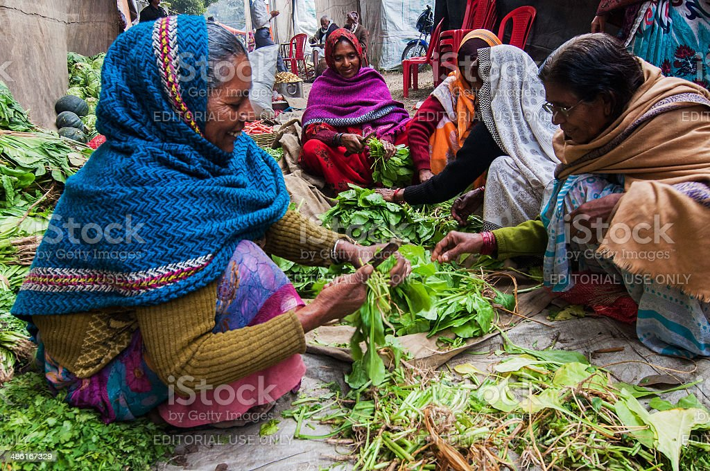 Rural Indian Women cutting vegetables stock photo