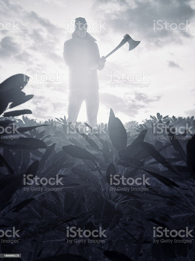 Rural killer standing with axe in the field stock photo