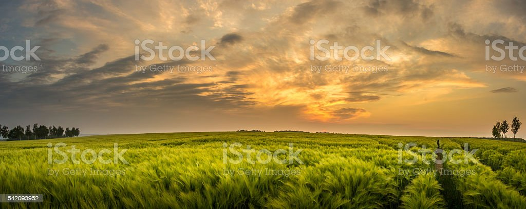 Rural landsape with beautiful sunset - Saxony, Germany. stock photo