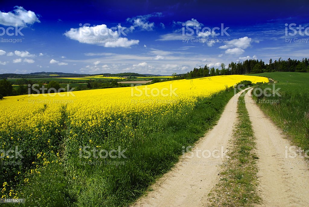 Rural landscape and road royalty-free stock photo