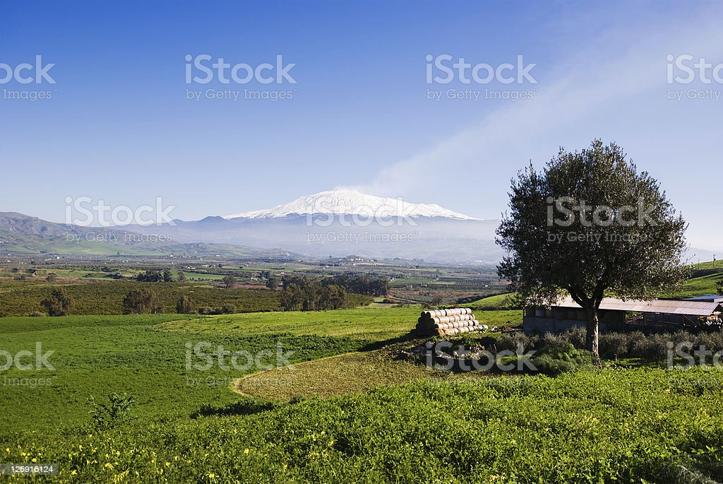 rural landscape and snowy volcano etna stock photo