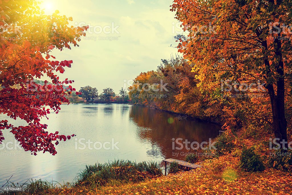 Rural landscape at sunset. Lake in autumn stock photo