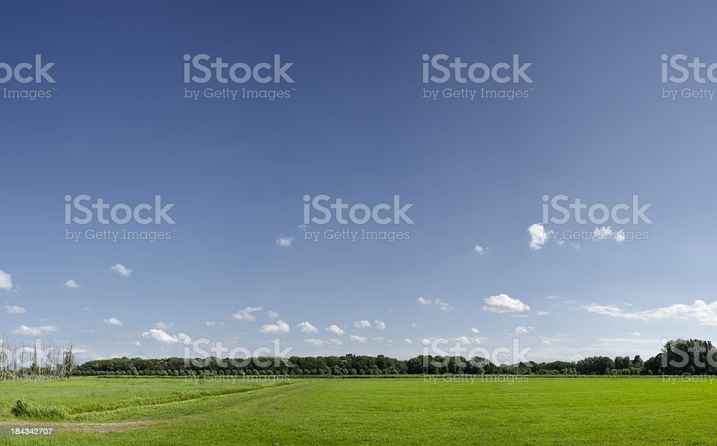 Rural landscape background - High resolution royalty-free stock photo
