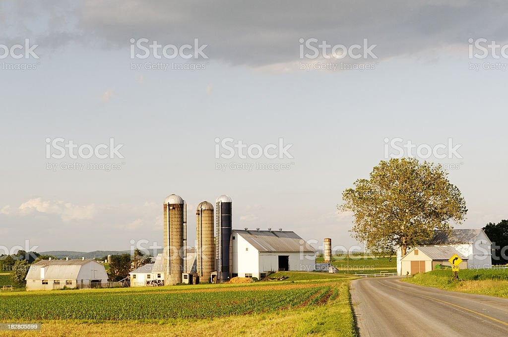 Rural landscape - farm and local road in Amish Pennsylvania royalty-free stock photo