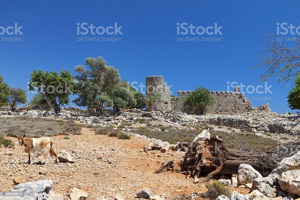 Rural landscape from Crete island stock photo