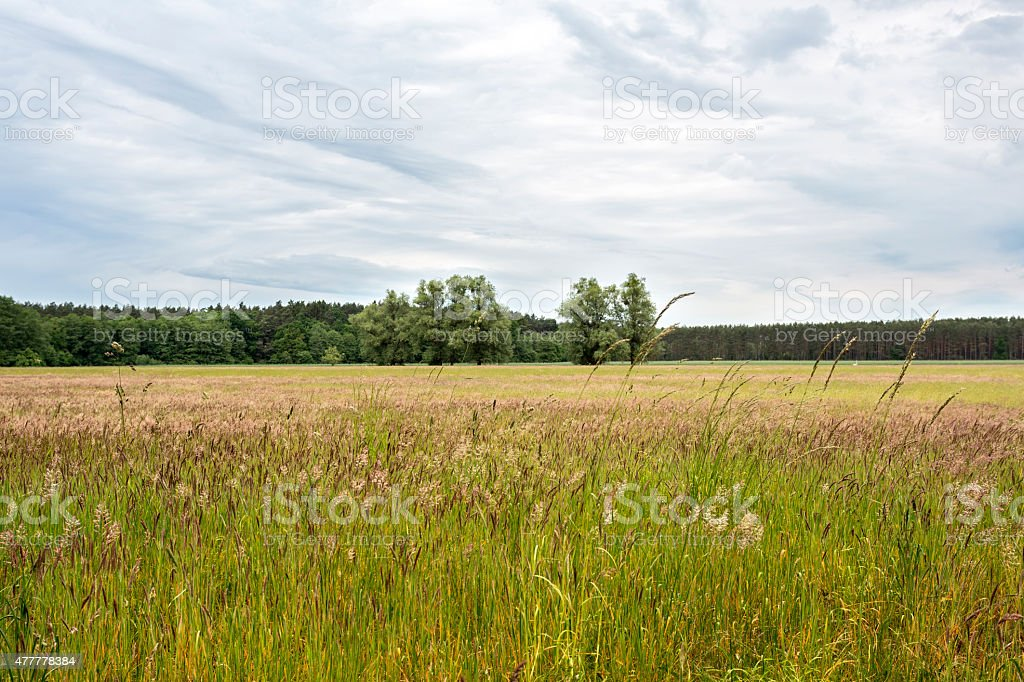 Rural landscape in East Germany stock photo