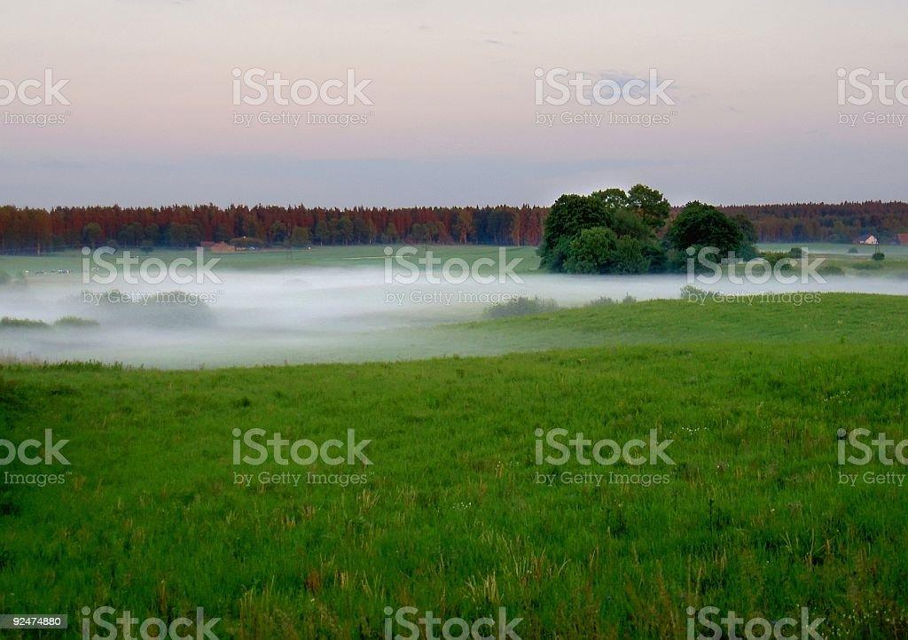 rural landscape in fog stock photo