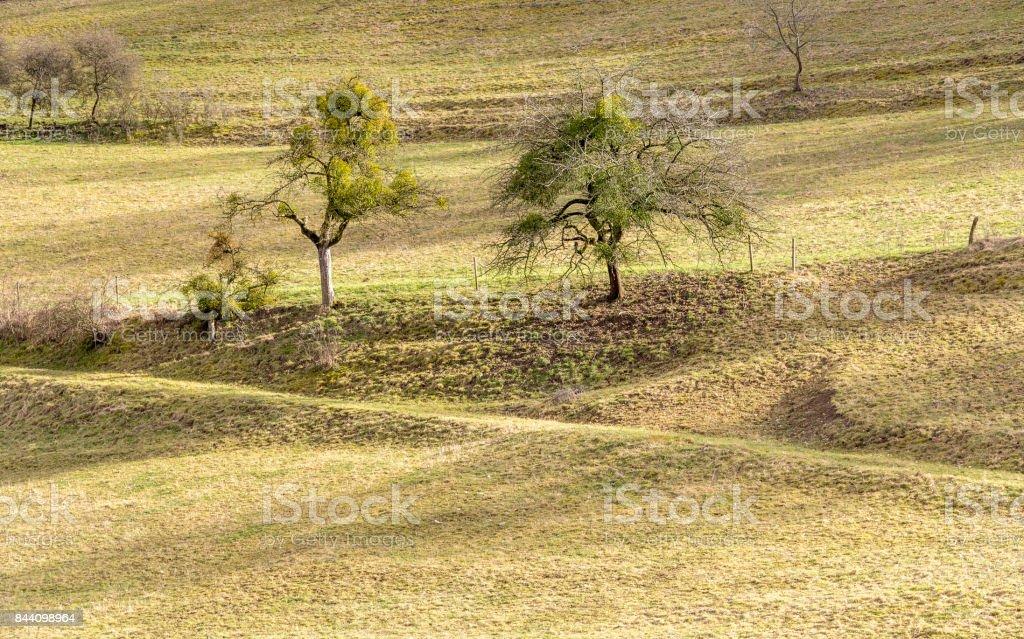 rural landscape in Hohenlohe stock photo