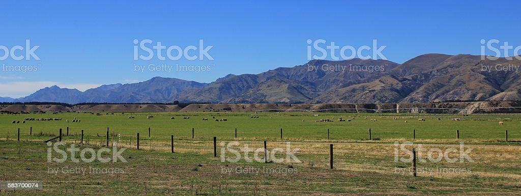 Rural landscape in Otago, New Zealand stock photo