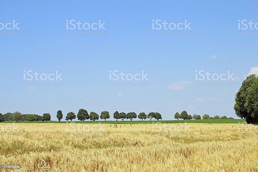 Rural landscape in Upper Bavaria stock photo