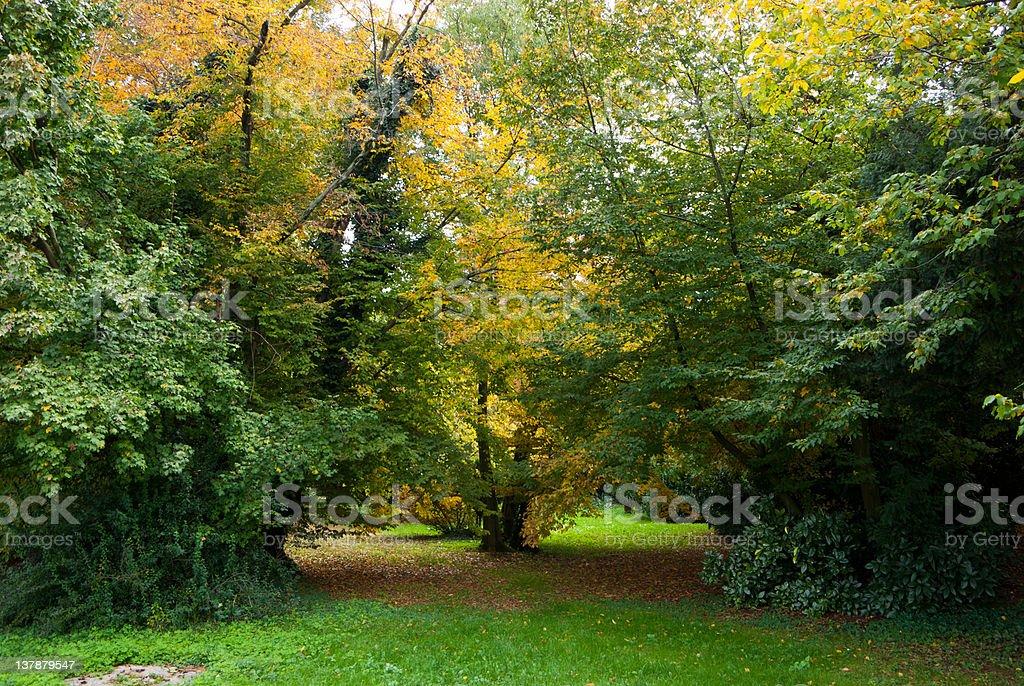 rural landscape of the Veneto, Italy royalty-free stock photo