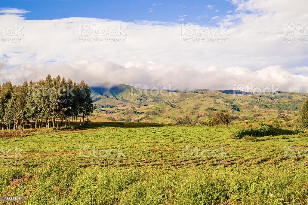 Rural landscape Tanzania stock photo