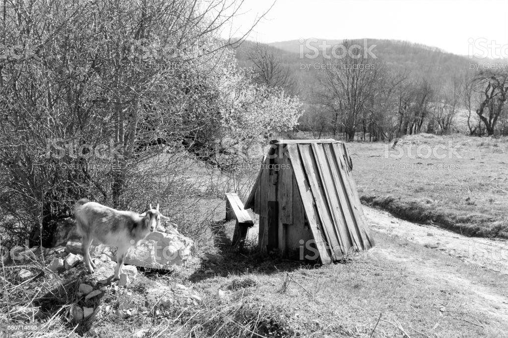rural landscape, the goat and the old well, black and white photo stock photo