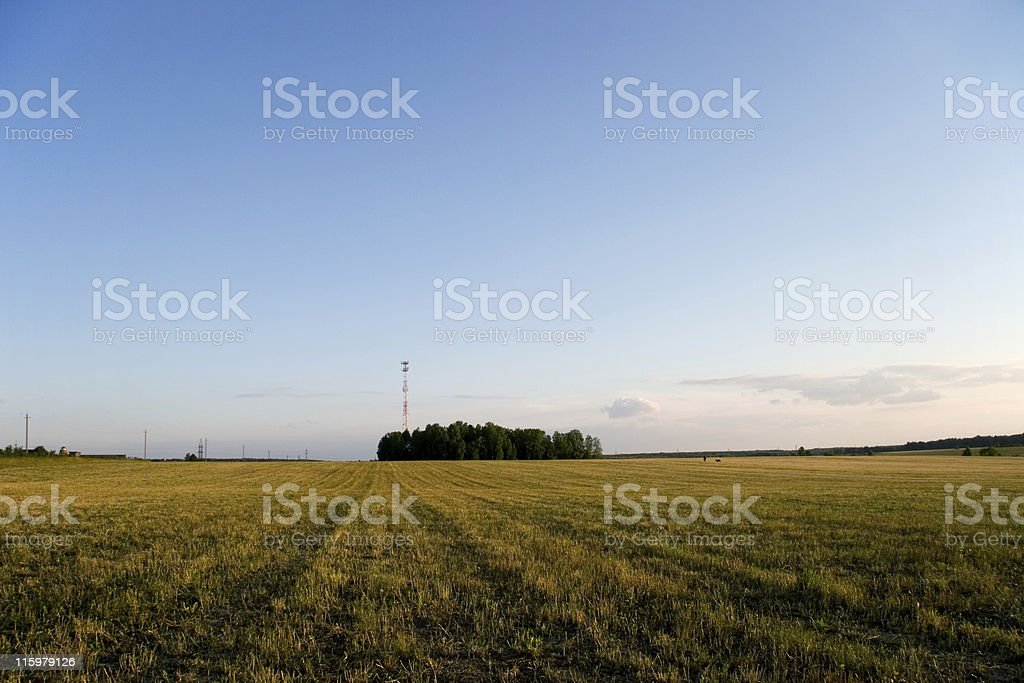 Rural Landscape With Cellular Tower royalty-free stock photo