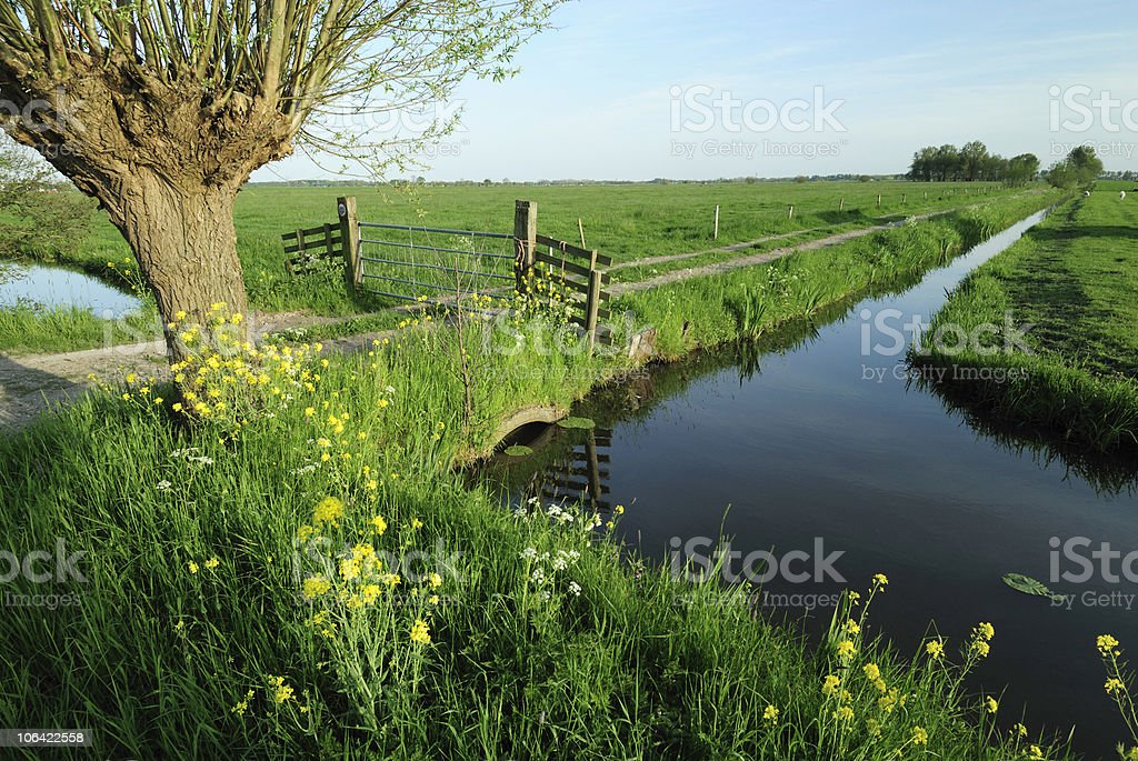 Rural landscape with ditch in the Netherlands stock photo