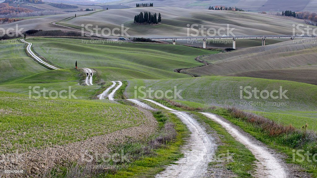 Rural landscape with green field and tracks stock photo