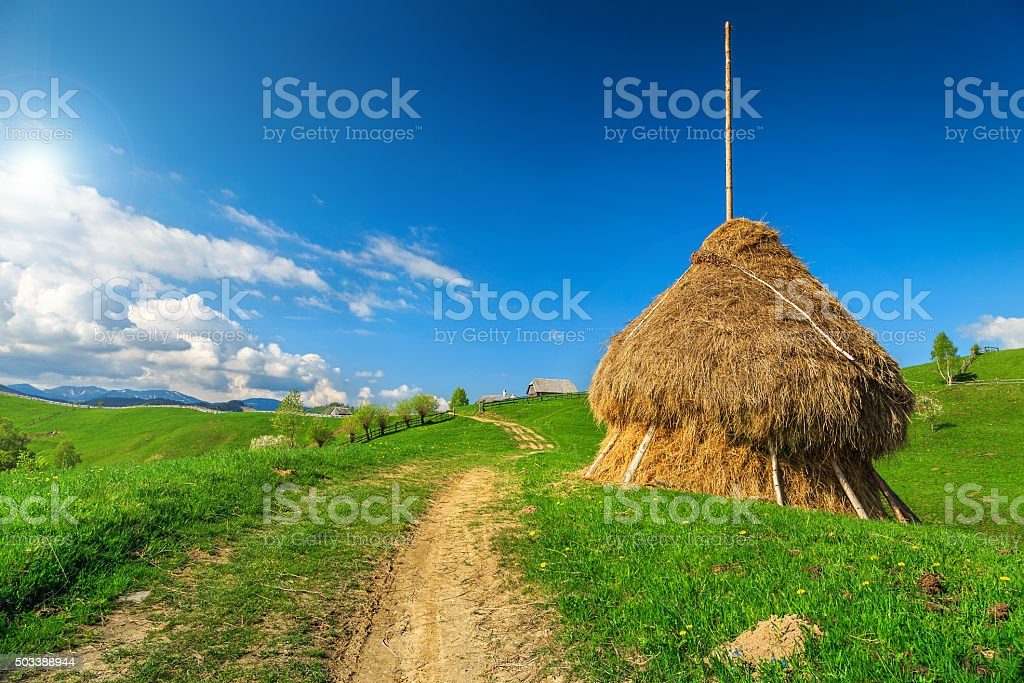 Rural landscape with hay bale,Transylvania,Romania,Europe stock photo