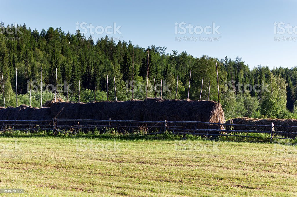 Rural landscape with haystacks stock photo