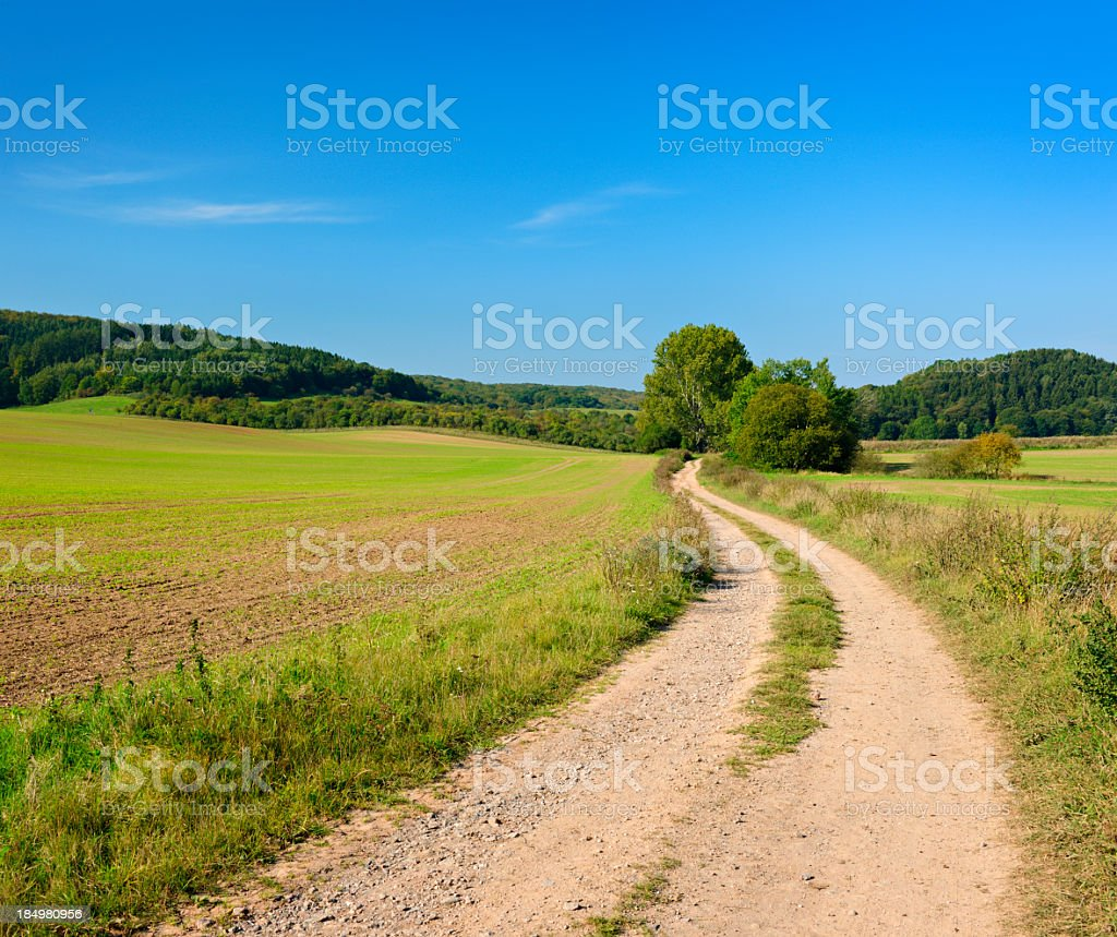Rural Landscape with Winding Farm Road Through Field and Forest royalty-free stock photo