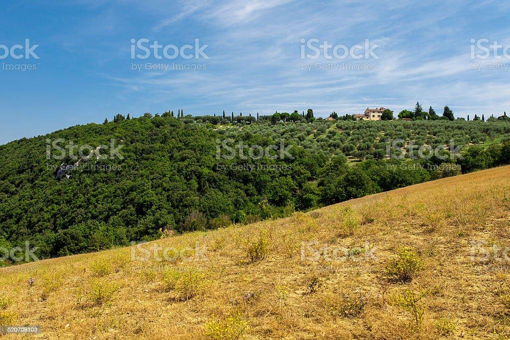 Rural landscapes of beautiful Tuscany, Italy stock photo