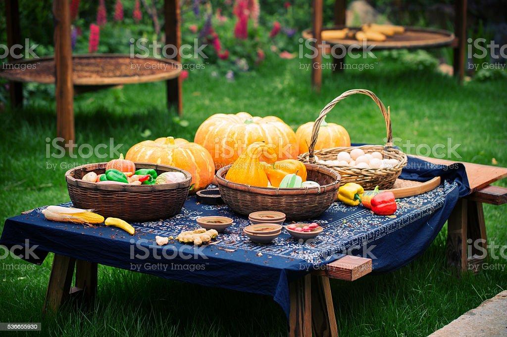 Rural landscape:vegetable,pumpkin,egg stock photo