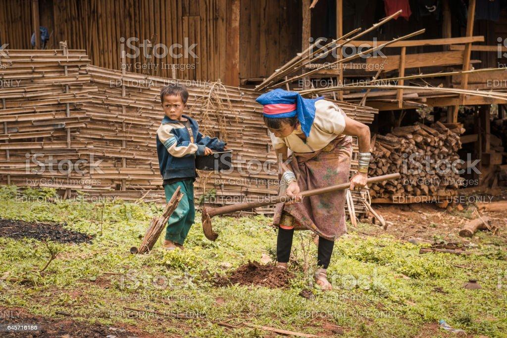 Rural life of Padaung (Karen) hill tribe stock photo