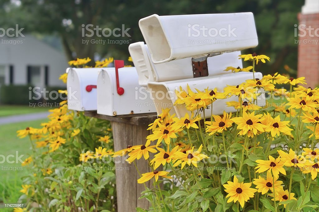 Rural Mail And Newspaper Boxes royalty-free stock photo