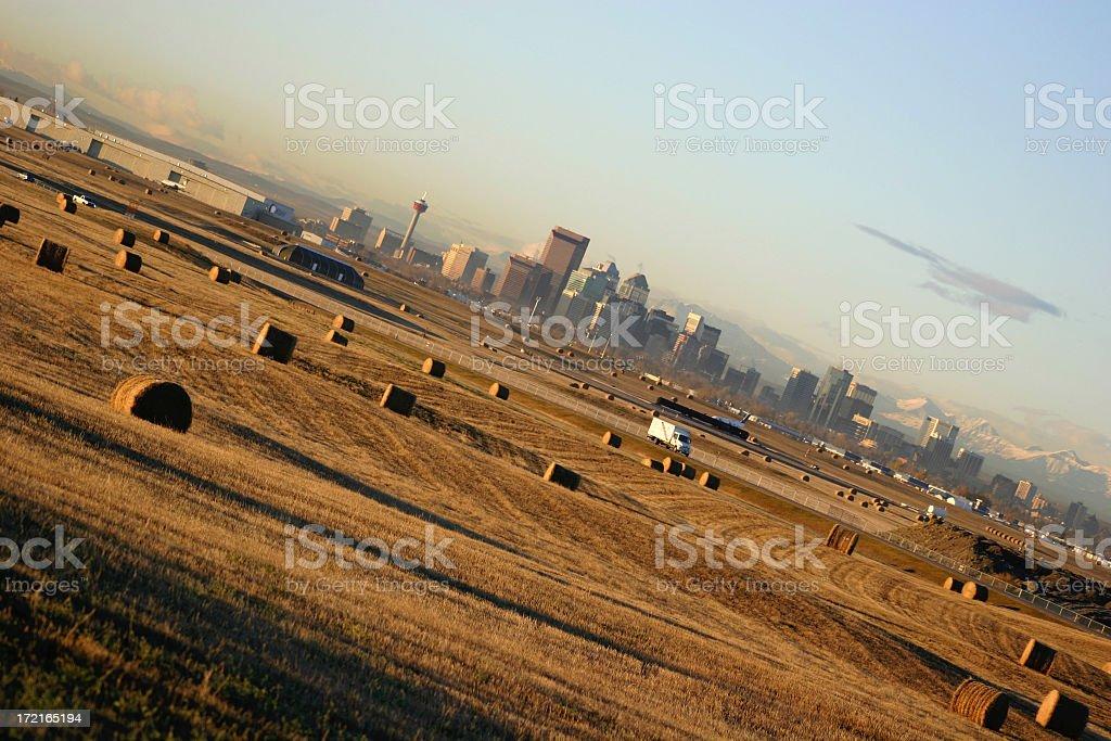 Rural meets Urban, Calgary royalty-free stock photo