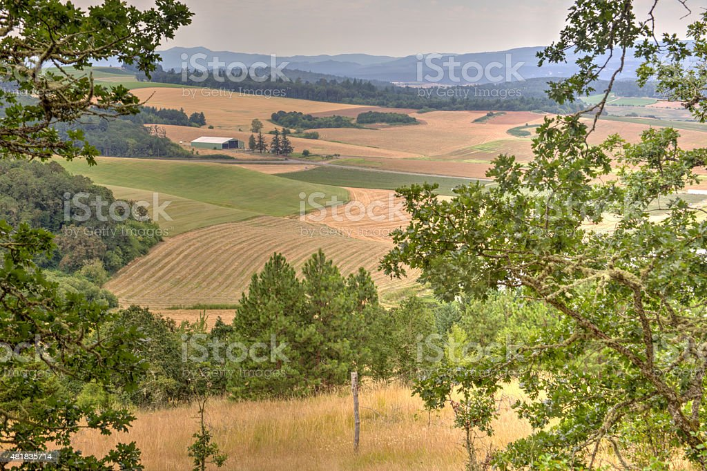 rural Oregon landscape stock photo