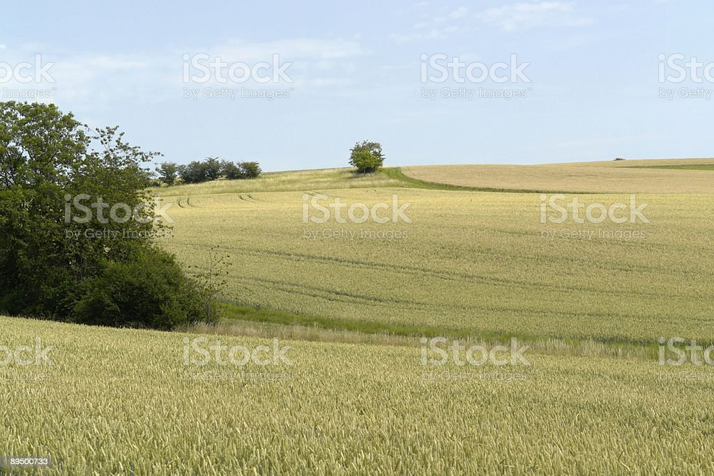 rural panoramic scenery in Hohenlohe royalty-free stock photo