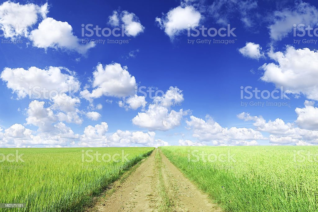Rural path among green field landscape stock photo