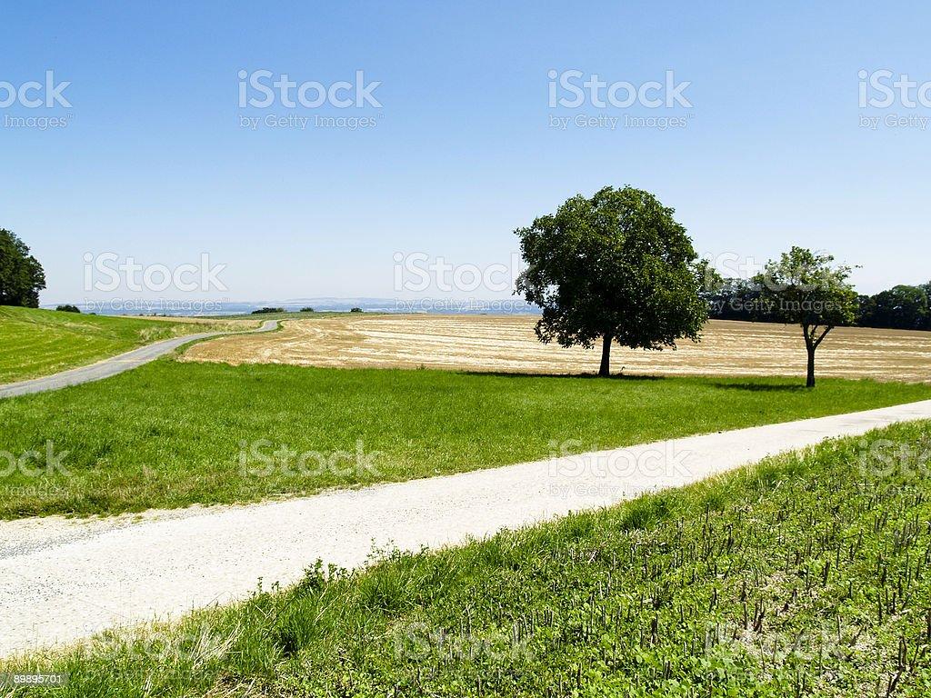 Rural path royalty-free stock photo