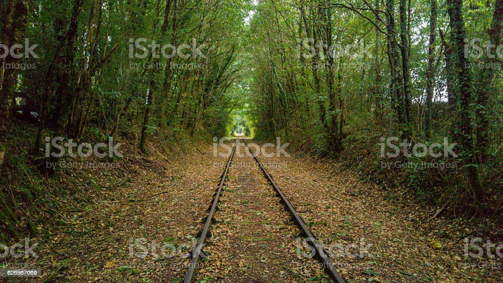 Rural Rail Line stock photo