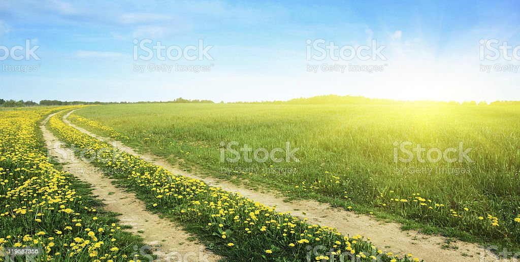 Rural road and sun. royalty-free stock photo