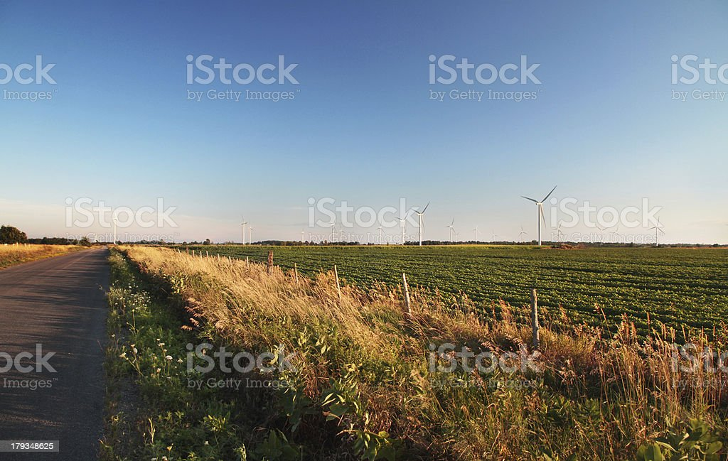 Rural road and wind turbines royalty-free stock photo