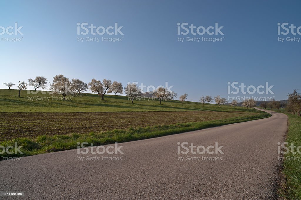 Rural road at springtime with courve stock photo