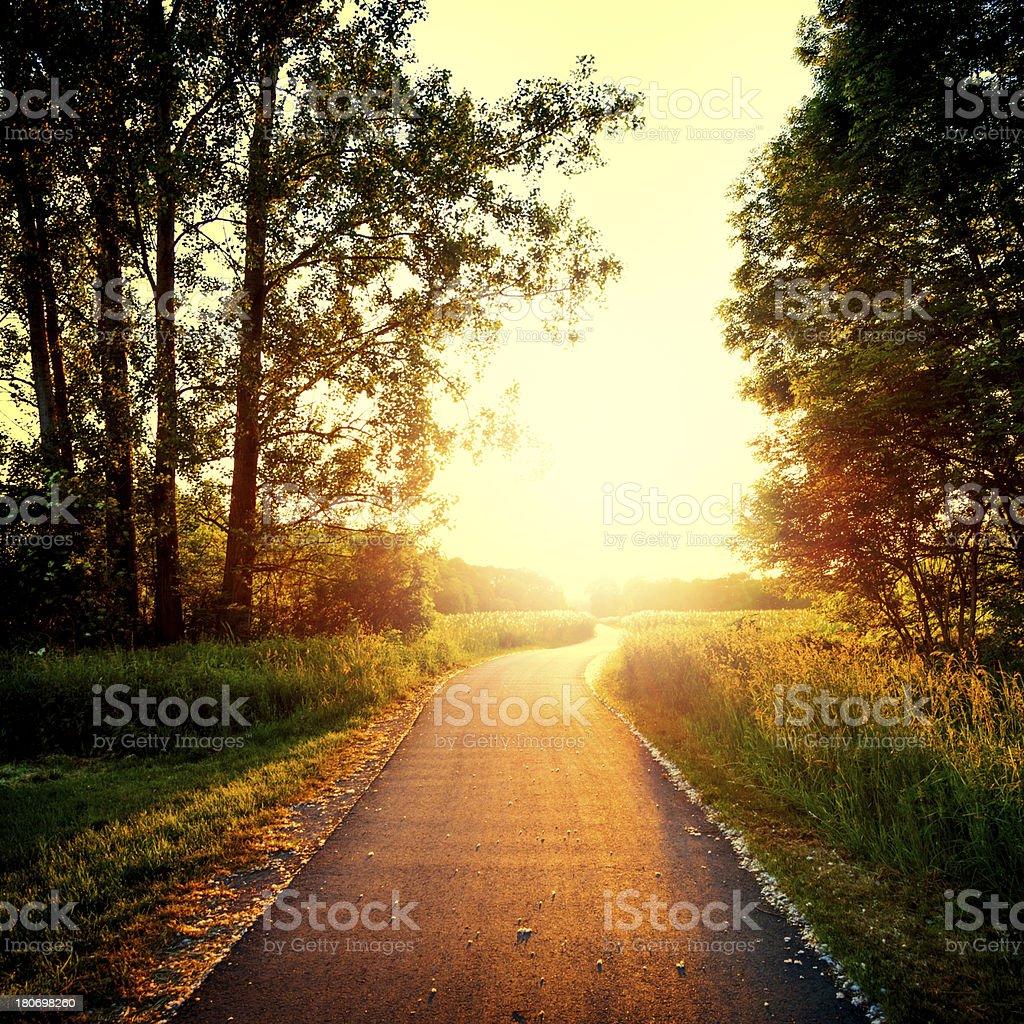 Rural Road at sunset stock photo