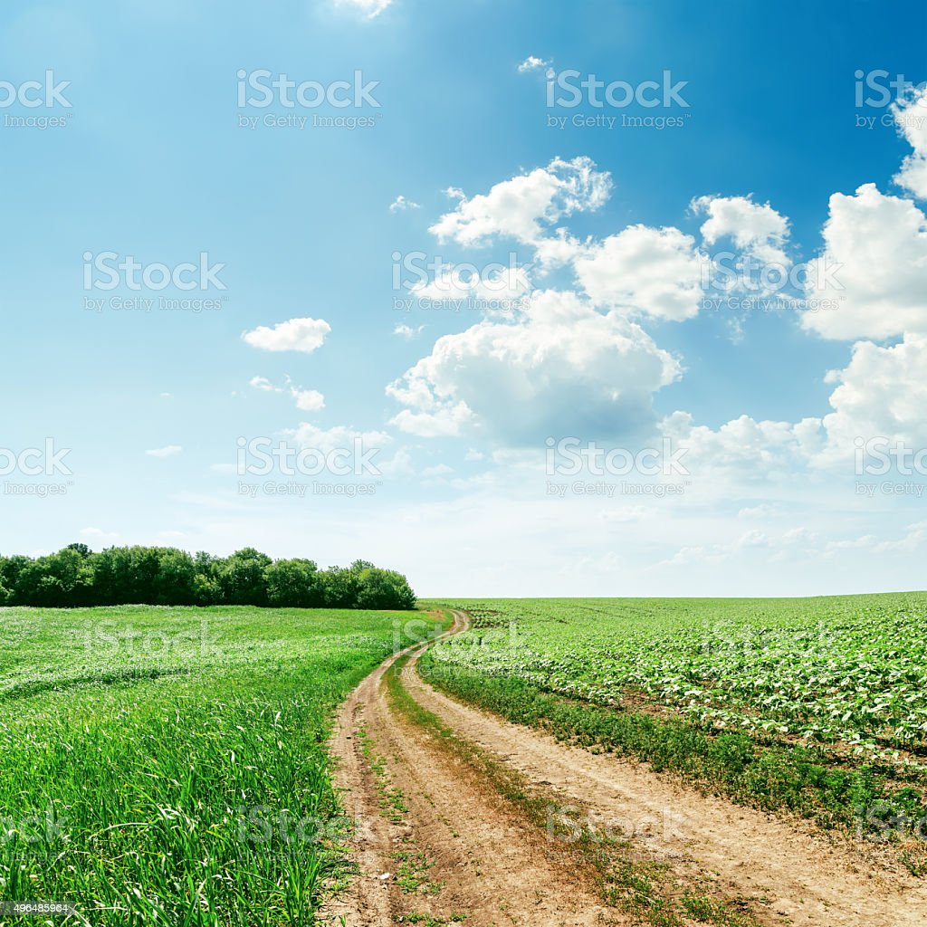 rural road in green spring fields and clouds over it stock photo