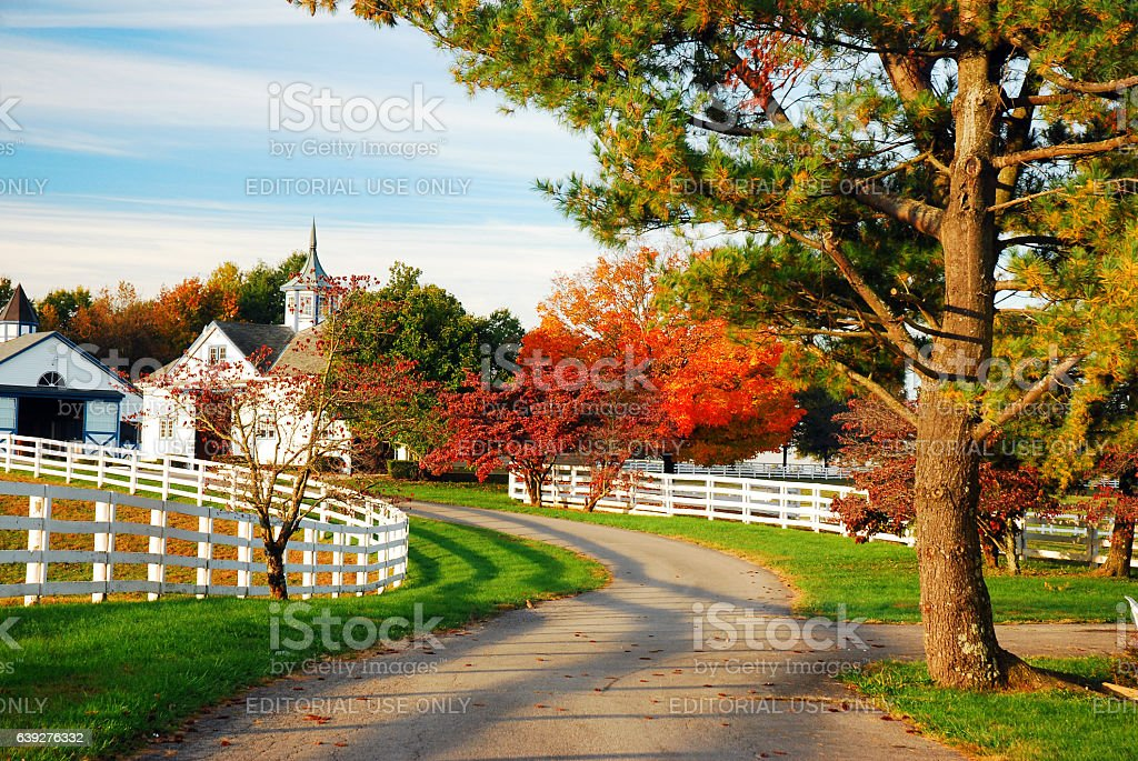Rural road in horse county stock photo