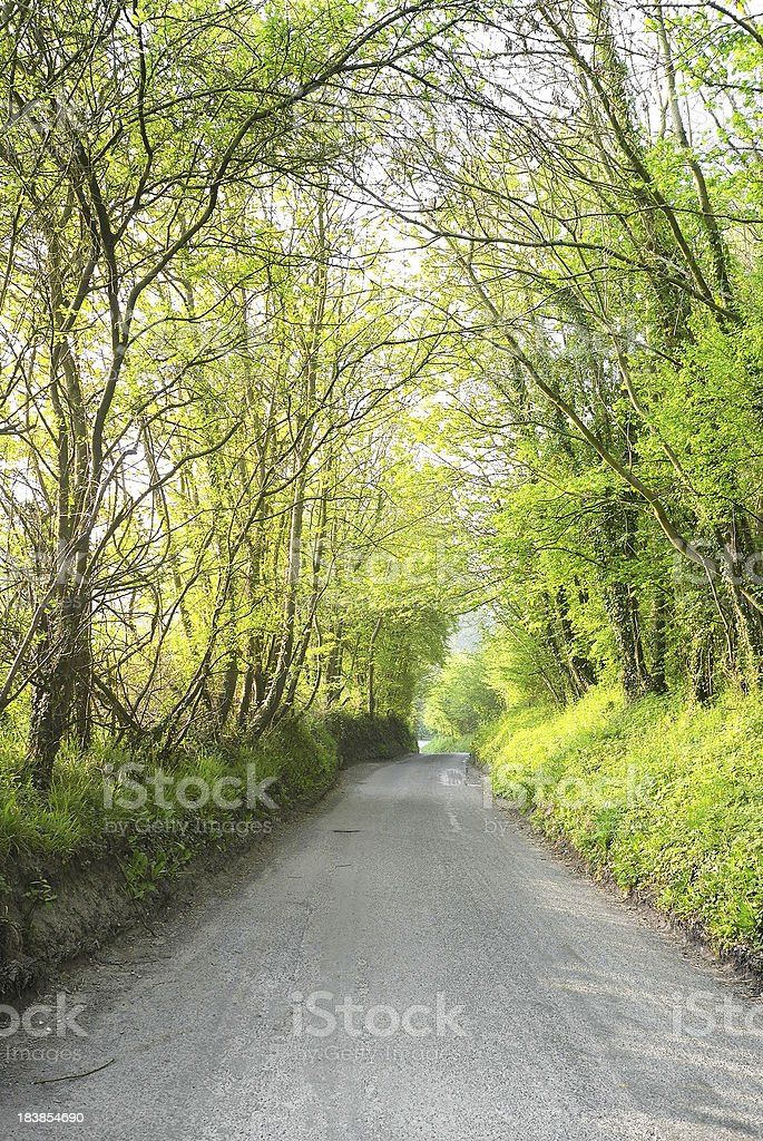 Rural Road in Spring, England royalty-free stock photo