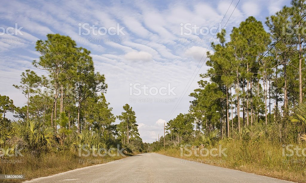 Rural road in the Florida Everglades National Park royalty-free stock photo