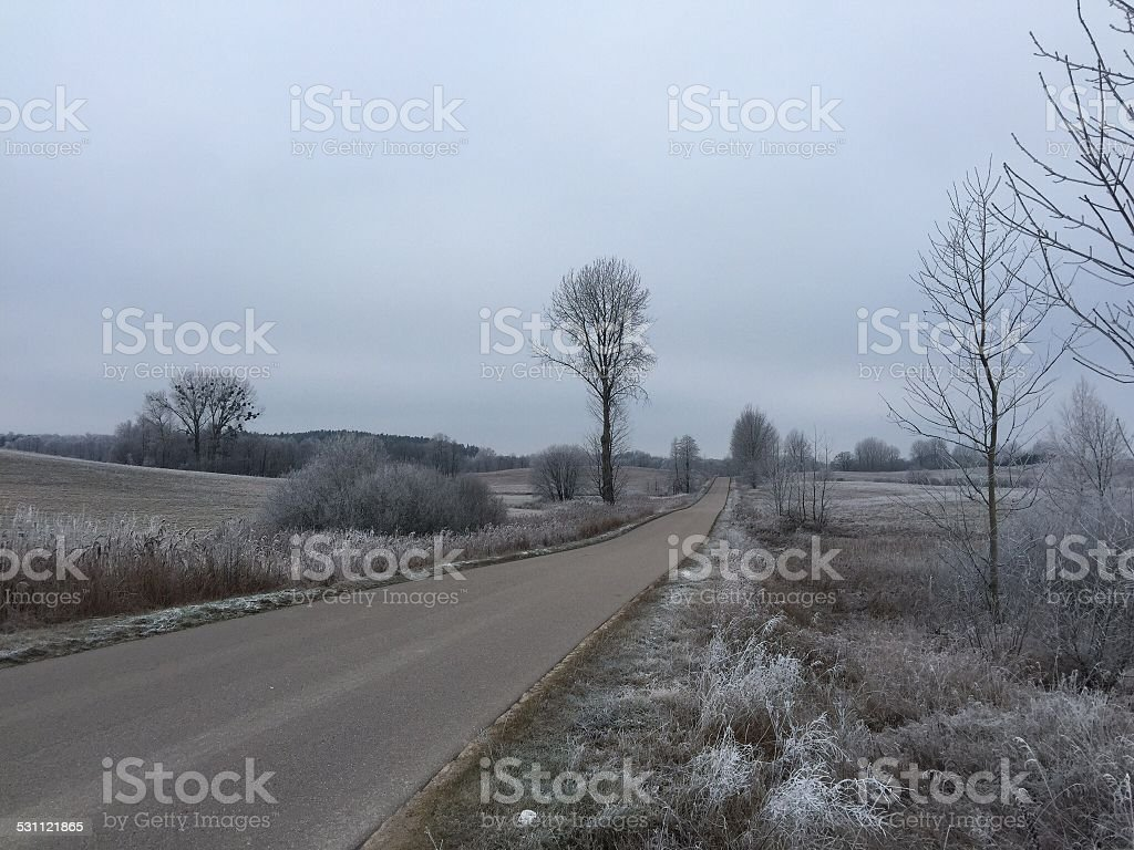 Rural road in the winter stock photo
