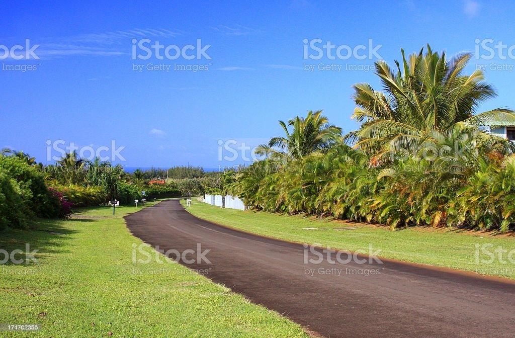Rural road on Hawaii royalty-free stock photo