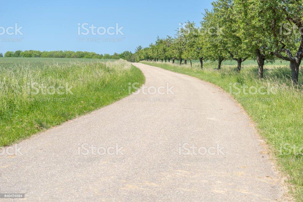 rural road scenery stock photo