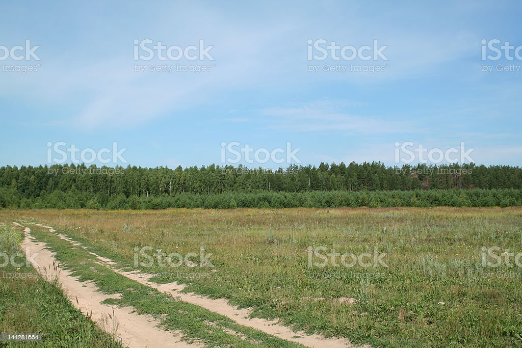 Rural road to forest. royalty-free stock photo