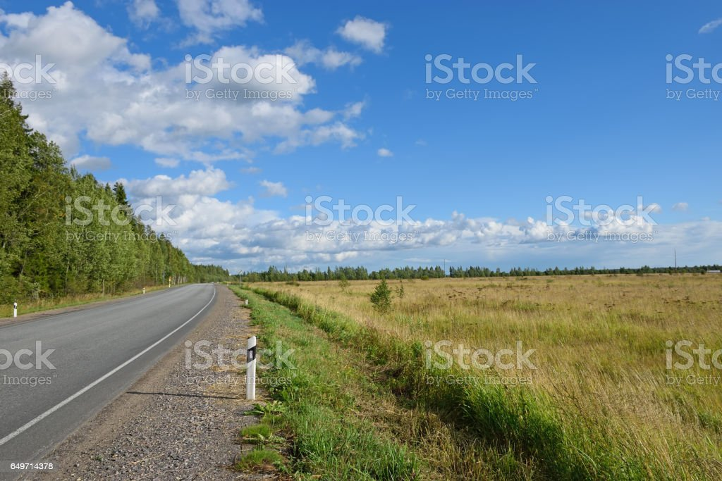 Rural road to Vyritsa between field and forest on a Sunny summer stock photo