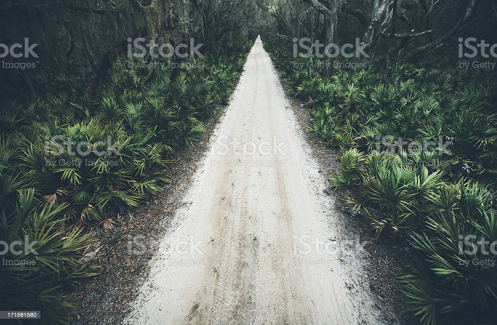 Rural sand road running through wooded coastal area royalty-free stock photo