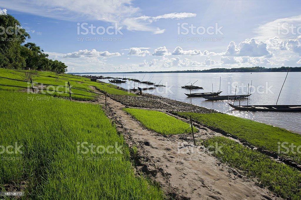 Rural scene and fishing boats at Mekong River, Cambodia stock photo