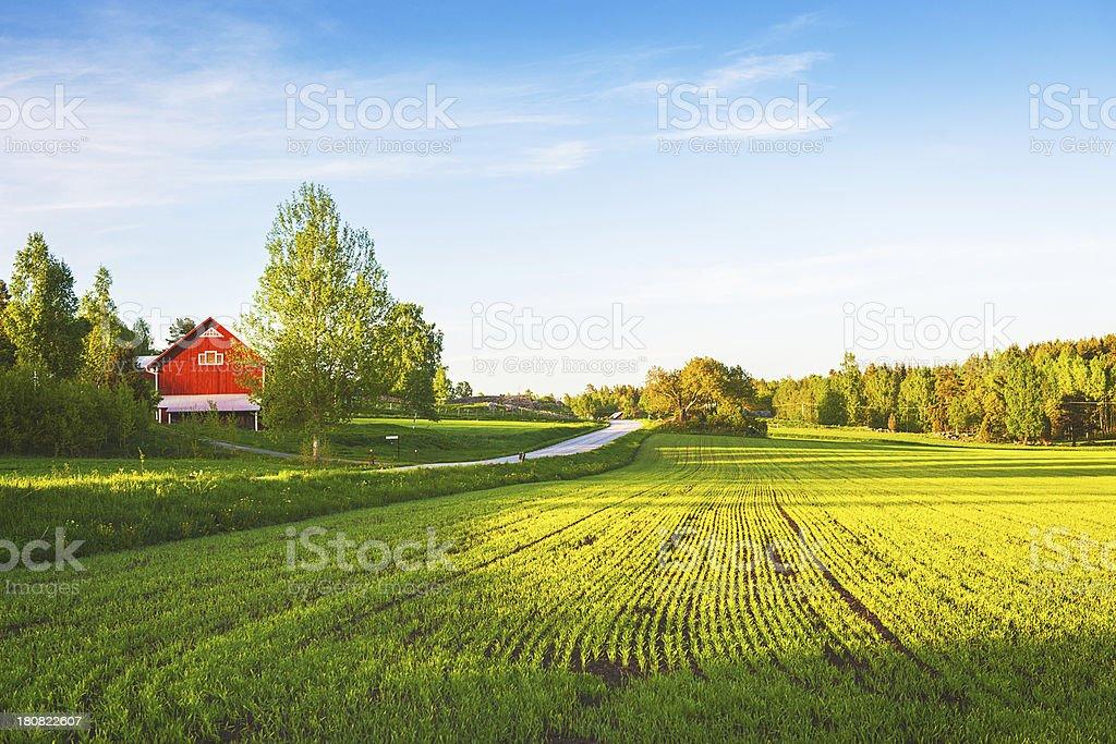 Rural scene in Sweden royalty-free stock photo