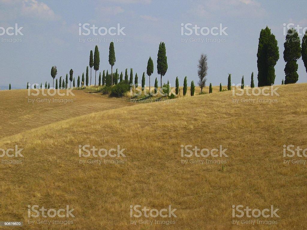 Rural scene in tuscany royalty-free stock photo